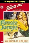 Watch Female Jungle Online for Free
