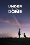 Watch Under the Dome Online for Free