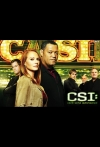 Watch CSI Online for Free