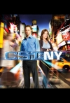 Watch Csi New York Online for Free