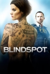 Watch Blindspot Online for Free