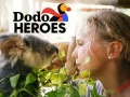 Watch Dodo Heroes Online for Free
