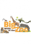 Watch Big Week at the Zoo Online for Free