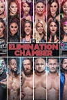 Watch WWE Elimination Chamber Online for Free